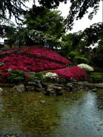 2021.05.17.lund. Visite du jardin Albert Kahn(6)